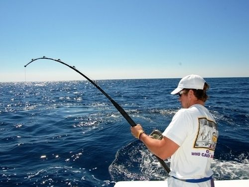 The Best Tips To Arrange The Perfect Fishing Trip